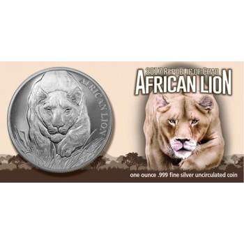 Čadas 2017 Afrikos Liūtas